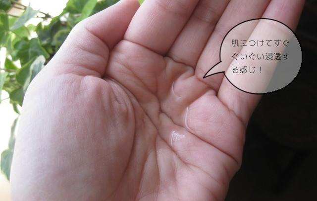 【ライースリペア】インナーモイスチュアローションNo.11の使い心地