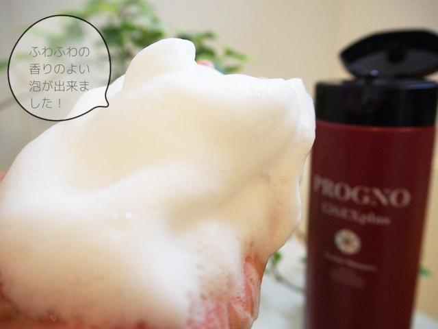 progno-126explus-foam