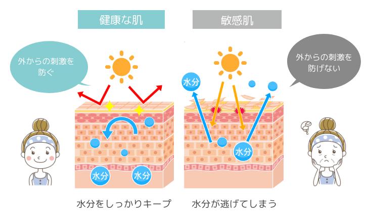 敏感肌の原因は「バリア機能の低下」